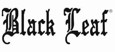 aus Glas INSOMNIA Black Edition 'Ice High' | 40 cm